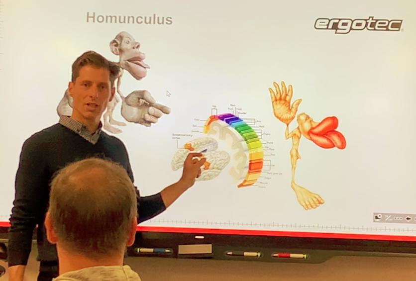 Der Homunculus sagt, welches Körperteil nach wieviel Platz in unserem Gehirn verlangt